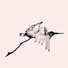 bird 6 by Francis Gallinagh