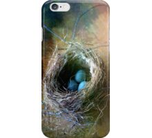 Nest iPhone Cover iPhone Case/Skin