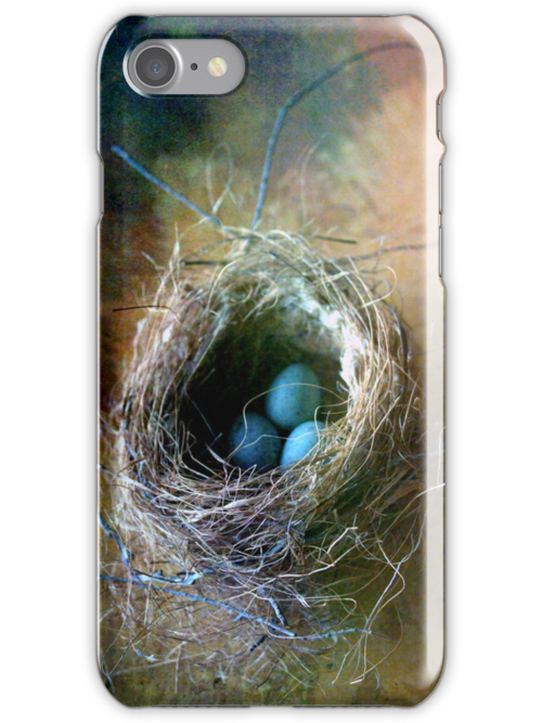 Nest iPhone Cover by Leslie Guinan