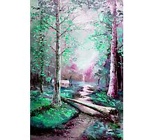 Memory of Woodland Creek Photographic Print