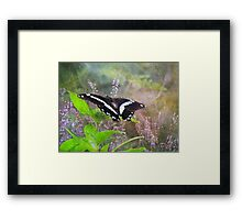 Silk and Lace Framed Print