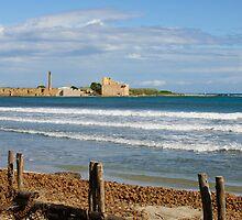 Tonnara and Torre di Vendicari, Noto, Sicily by Andrew Jones