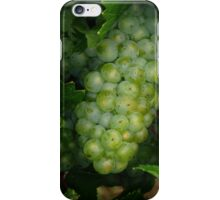 Waiting for the Harvest iPhone Case/Skin