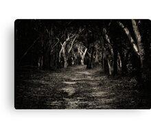 Into the bush we go... Canvas Print