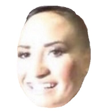 Noelle Foley besides 18729371 Undertale Temmie Fan Art further  in addition 20047065 Triggered besides 17088764 Poot Lovato. on iphone update