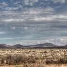 A Karoo Landscape - HDR by Margo Naude