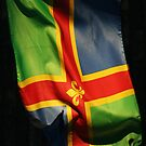 Lincolnshire flag iPhone cover by LincolnDispImgs