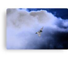 Airshow windermere Canvas Print