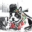 Boston Terrier Christmas by Marcia Rubin