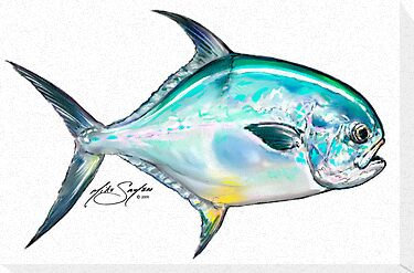 Permit Illustration - Mike Savlen Fly Fishing art by Mike Savlen