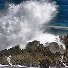 """West coast waves"" - Cape coast - South Africa by Sandy Beaton"