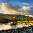River Tay by Tom Gomez