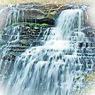 Brandywine Falls by Marcia Rubin