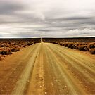 """""""I'm on the road to nowhere"""" - Karoo - South Africa by Sandy Beaton"""