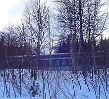 Abandoned Railway Car by Annlynn Ward