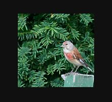An uncommon Common Linnet Unisex T-Shirt
