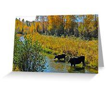 Mother daughter Moose Greeting Card