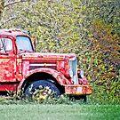 Abandoned Truck by Marcia Rubin