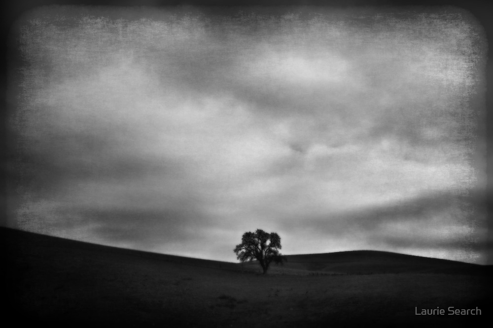 Emptiness by Laurie Search