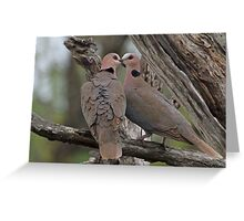 Romantic doves Greeting Card