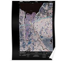 USGS Topo Map Washington State WA Nisqually 20110504 TM Inverted Poster
