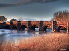 Oldest Bridge In Dorset by naturelover