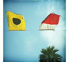 beach flags Photographic Print