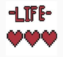 Full life by Will Hallam