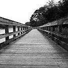 The Boardwalk by Marcia Rubin