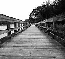 The Boardwalk by Marcia Rubin