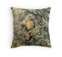 Female Cardinal in a Tree Throw Pillow