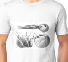 Vintage Natural History Mollusca Illustration Unisex T-Shirt