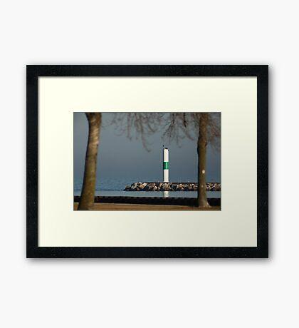 One isn't a tree! Framed Print