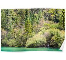 Colorful autumn forest and tiny waterfall at a lake edge Poster