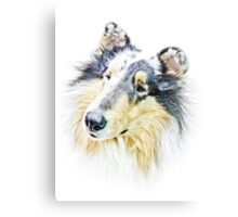 Beautiful Collie Canvas Print