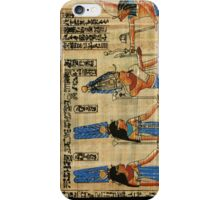 Egyptian Papyrus iPhone Case/Skin