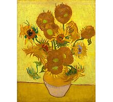 Vincent Van Gogh - Sunflowers Photographic Print