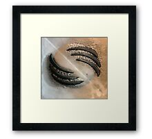Abstract - claw Framed Print