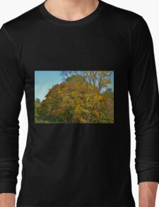 Not Quite Long Sleeve T-Shirt