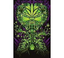 Marijuana Love Tree Photographic Print