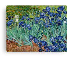 Vincent Van Gogh - Irises Canvas Print