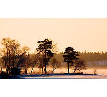 Golden light Photographic Print