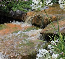 Cascading water over rocks  by kreativekate