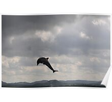 Dolphin jumping at night Poster