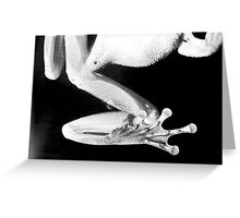 Frog Legs Greeting Card
