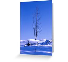 Lonely tree in winter Greeting Card