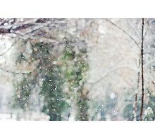 falling snow Photographic Print