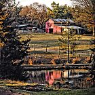 The Barn by Robin Lee