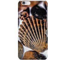 Seashell iPhone Case/Skin