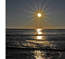 Salvo Sunrise by Robin Black